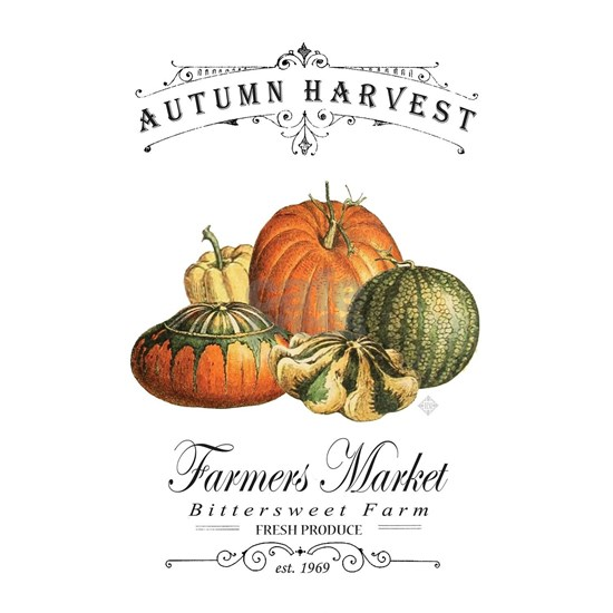 Modern vintage fall gourds and pumpkin