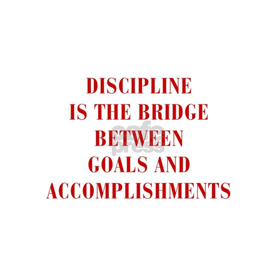 DISCIPLINE-IS-THE-BRIDGE-BOD-RED