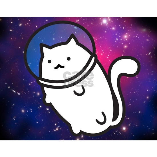 Fat Cat in Space