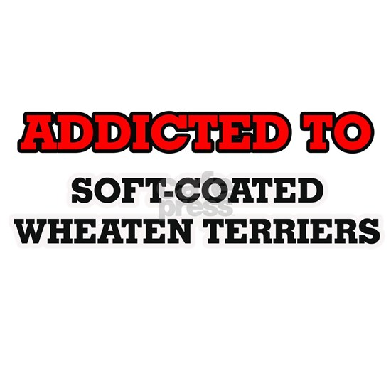Addicted to Soft-Coated Wheaten Terriers