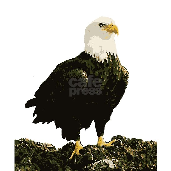 Bald Eagle edit