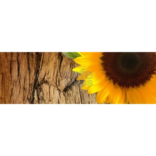 rustic heart autumn sunflower