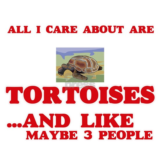 All I care about are Tortoises