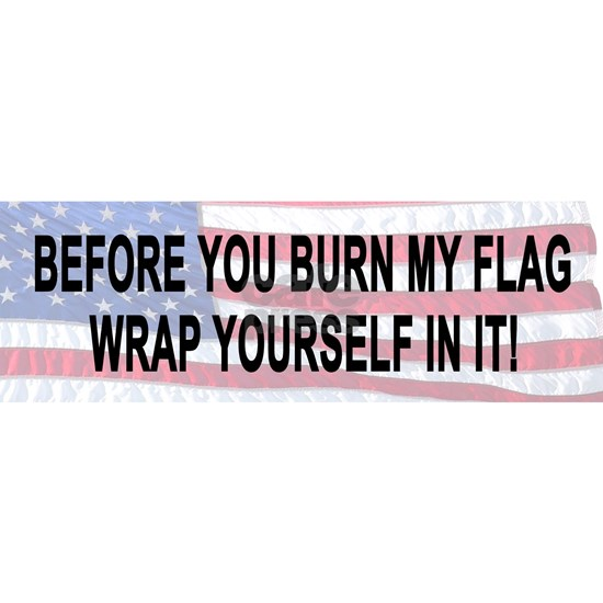 Before You Burn My Flag