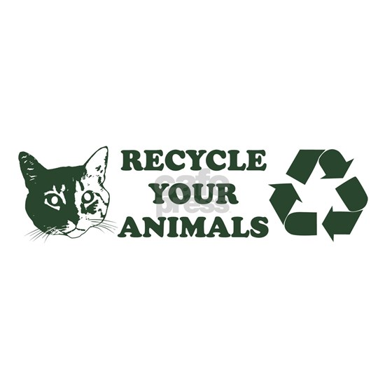recycle your animals.bumper sticker.white