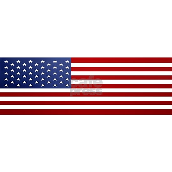 10x3_sticker_american_flag