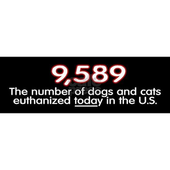 statistic__bumper
