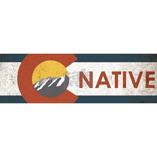 Colorado State Flag Native