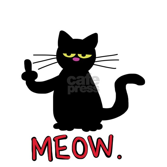 meow fuck you cat