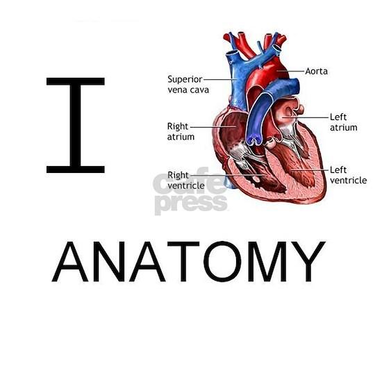 I heart anatomy