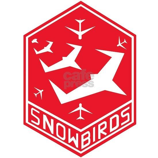 snow_bird_aerobatic