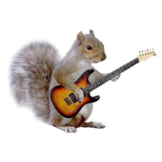 squirrel_guitar