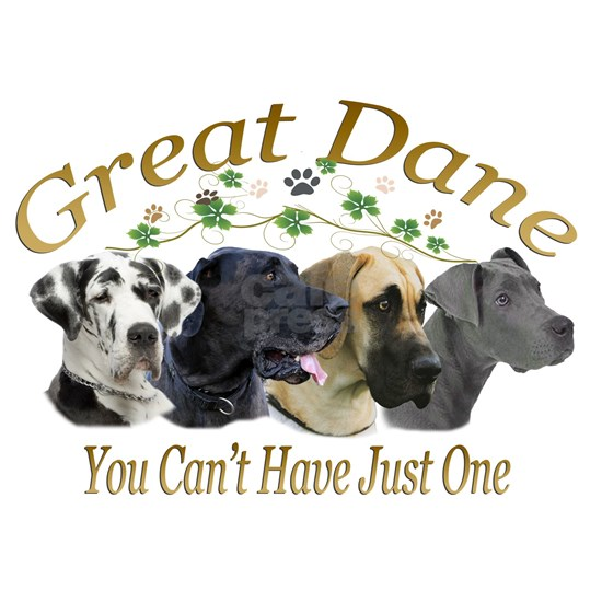 Great Dane cant have just one