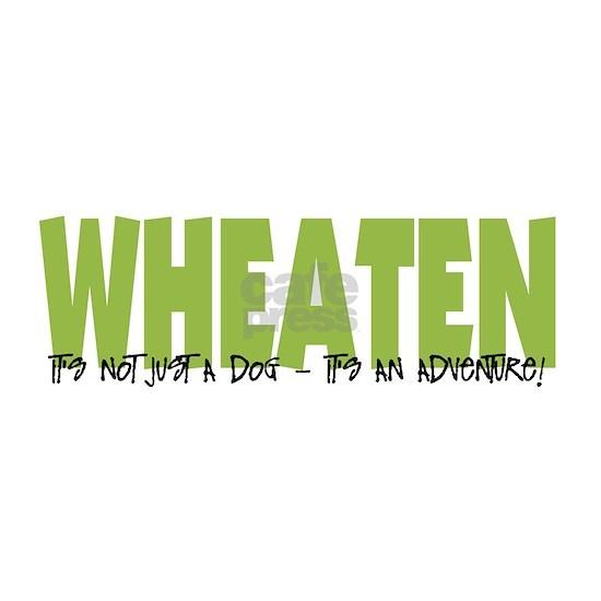 Wheaten ADVENTURE