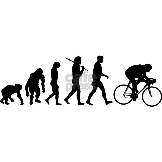 Cycling Evolution