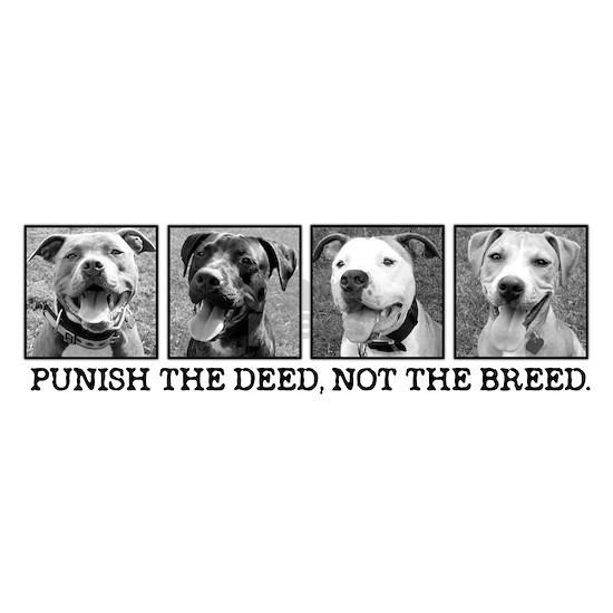 punishdeed5
