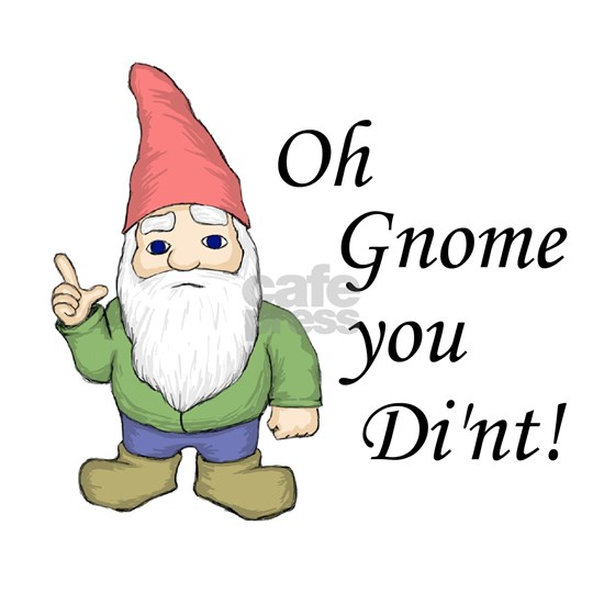 gnome_dint