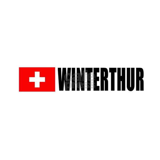 switzerlandwinterthurflgweht
