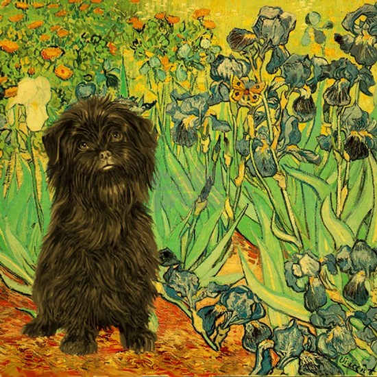 Irises With Affenpinscher