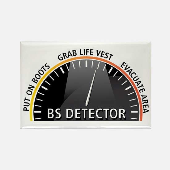 BS Detector Magnets