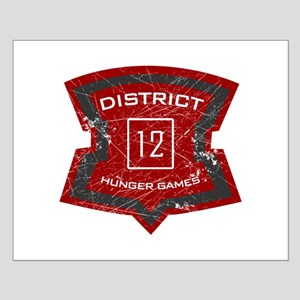 District 12 sign Small Poster
