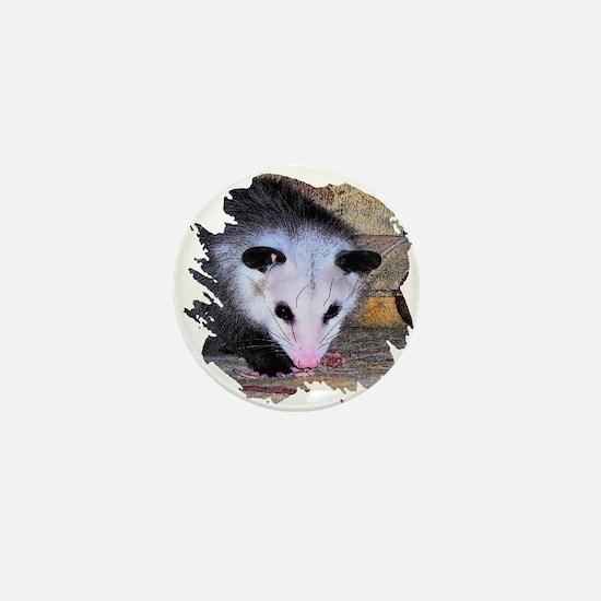 Virginia Opossum Mini Button