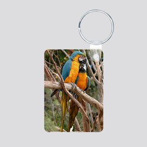 Blue And Gold Macaw Aluminum Photo Keychain