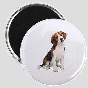 Beagle #1 Magnet
