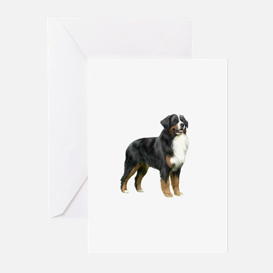 Bernese MD (stand) Greeting Cards (Pk of 10)