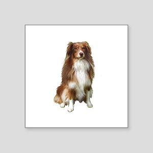 """Australian Shep (tri) #2 Square Sticker 3"""" x 3"""""""