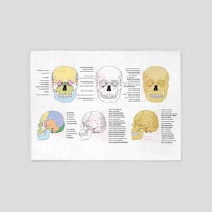 doctor skull 5'x7'Area Rug