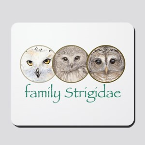OWLS art, family Strigidae  Mousepad