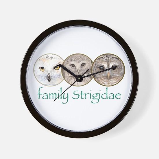OWLS art, family Strigidae  Wall Clock