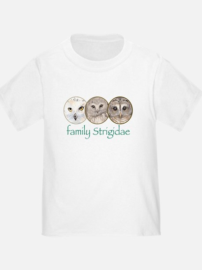 OWLS art, family Strigidae  T