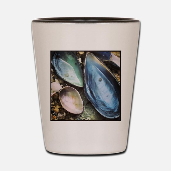 Sweet Shells Shot Glass