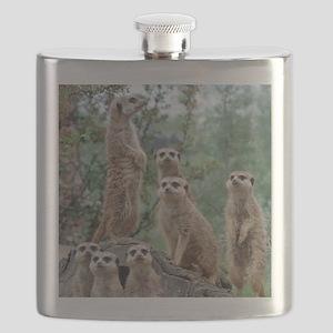 Meerkat010 Flask