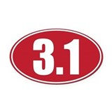 3.1 Oval Car Magnets