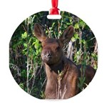 BABY MOOSE Ornament