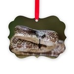 FORKED TONGUE SAMMY Ornament