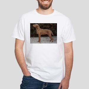 wirehaired vizsla T-Shirt