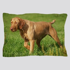 wirehaired vizsla Pillow Case