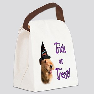 Airedale TerrierTrick Canvas Lunch Bag