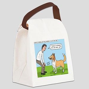 Celebrity Rehab Canvas Lunch Bag