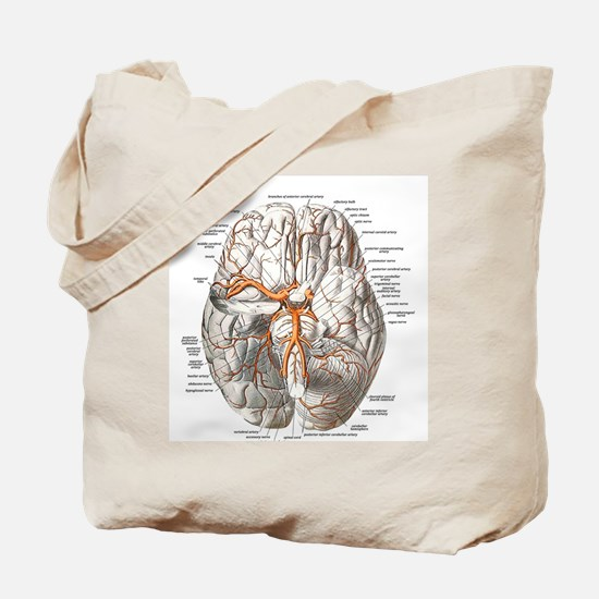 Brain and Blood Vessels Tote Bag