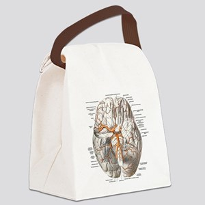 Brain and Blood Vessels Canvas Lunch Bag