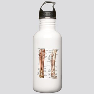 Anatomy of the Feet Stainless Water Bottle 1.0L