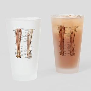 Anatomy of the Feet Drinking Glass