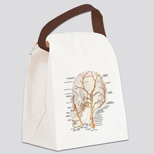 Circulation in the Skull Canvas Lunch Bag