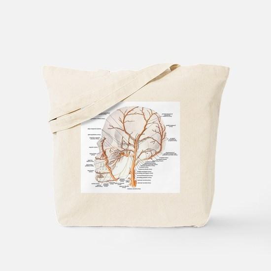 Circulation in the Skull Tote Bag