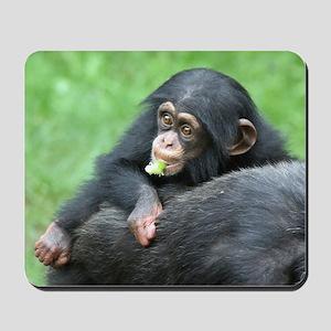 Chimpanzee005 Mousepad